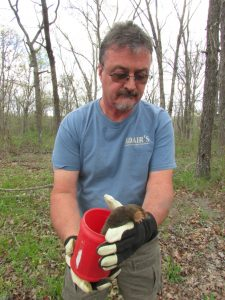 Trapper Adair releasing a live mole