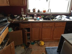 Raccoon Damage Inside of Lake Home
