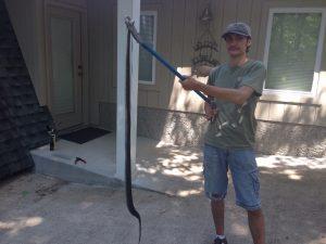 Black snake removal